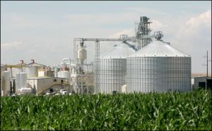 "Corn ethanol is now almost universally recognized as a ""false"" winner, that had many powerful political friends but little scientific basis for support.  Leaving aside the ethical issues of having fuel compete with food production, most scientific studies have shown that the production of ethanol from corn only nets at most 30% more energy than is input in the process.  Furthermore intense water and soil usage contribute to its overall negative picture as a fuel for mechanical devices."